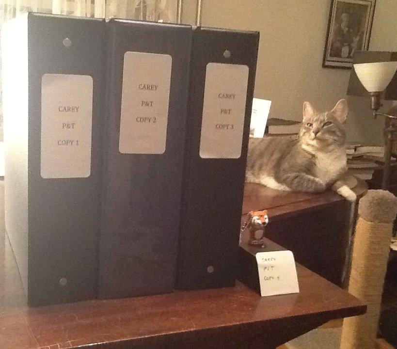 Dossier copies